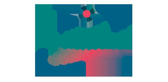 Tecnología Ionizzed